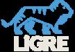 LiGRE Software Logo