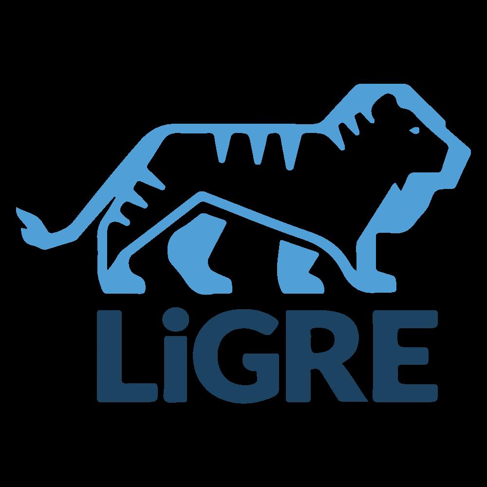 LiGRE Software